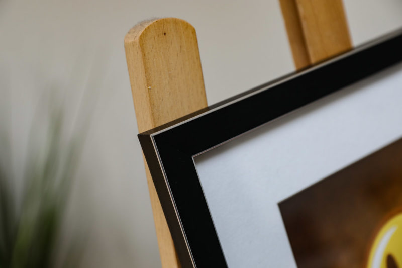 A3 & A4 Frame and Mount